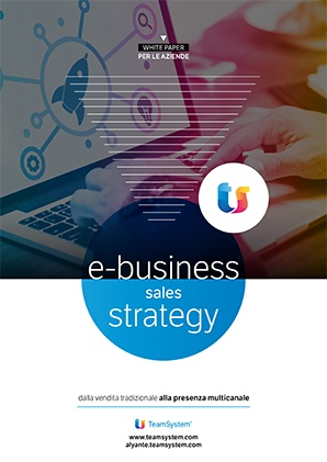 E-business sales strategy